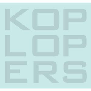Koplopers in de Zorg // Partner van Zorgcommunity